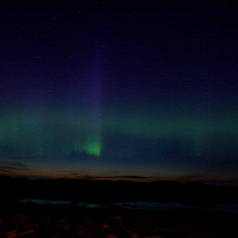 NewfoundlandVinylalbumcoverexampleVS